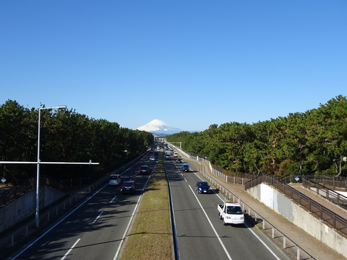 View of Mount Fuji from Route 134