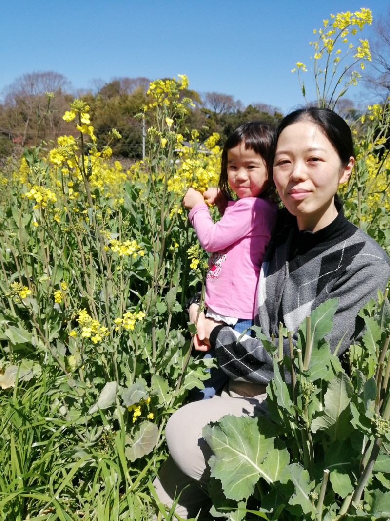 Photo of picking rape blossoms 2
